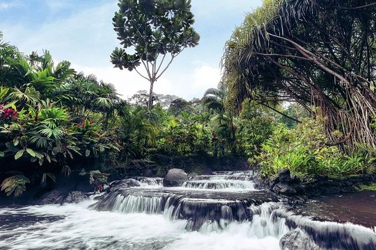 arenal volcano and tabac n hot springs day trip from san jose rh tripadvisor com