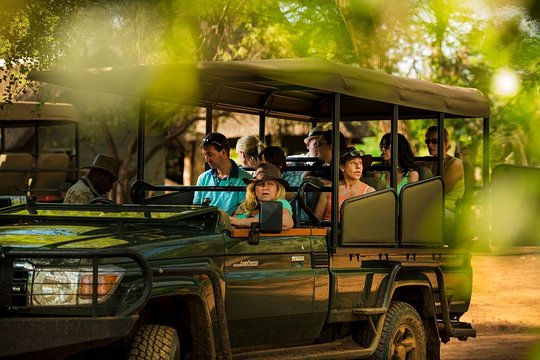 3 Days / 2 Nights Western Cape Big 5 Safari and Route 62 from Cape Town