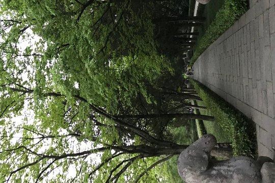 Jiangsu dating Näytä