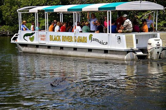 Image result for Black River Safari Tour-St.Elizabeth