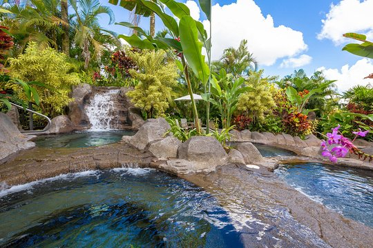 Tripadvisor   Arenal Volcano and Hot Springs Day Trip from ...