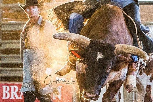Tripadvisor 2020 Tejas Rodeo Company General Admission