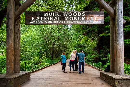 Muir Woods Expedition Tour
