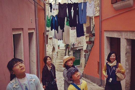 Escort girls in Rovinj