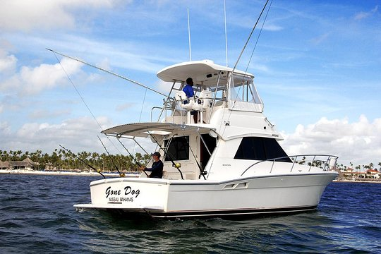 Offshore Deep Sea Fishing Charters Awesome Boat Gone Dog 37 Affordable Price
