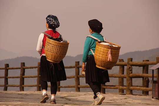 Camine Por El Río Guilin Li El Campo Yangshuo Y Las Terrazas De Arroz Longji