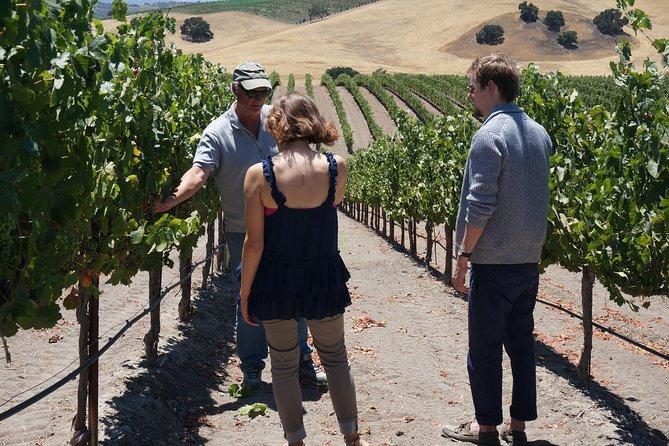 Private Winemaker's Wine Tour of Santa Barbara