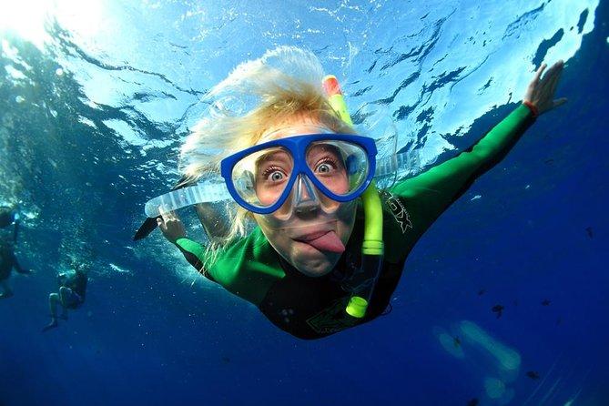 Full-Day Snorkeling Rental Package