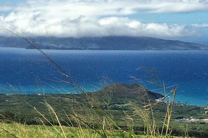 Kula, Maui Upcountry Farm Tour