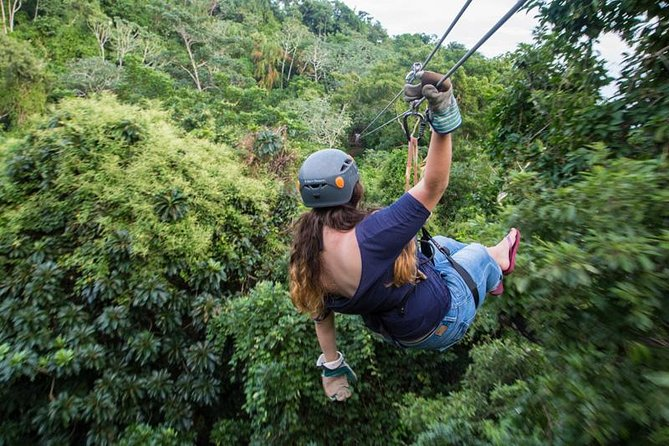Zipline Suspension Bridges and Hiking Adventure