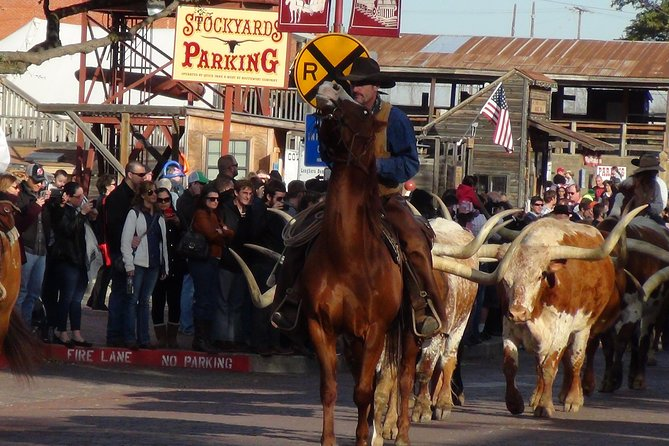 Small-Group Dallas and Fort Worth City Sightseeing Tour
