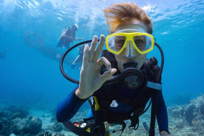 Aruba Discover Scuba Diving