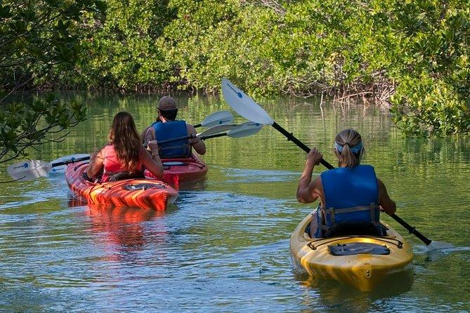 Key West Half Day Kayak Rental