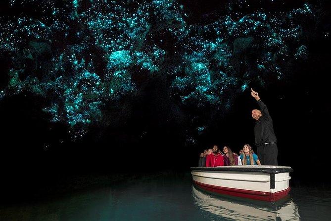 Tauranga Shore Excursion: Hobbiton + Waitomo Glowworm Caves Private Tour