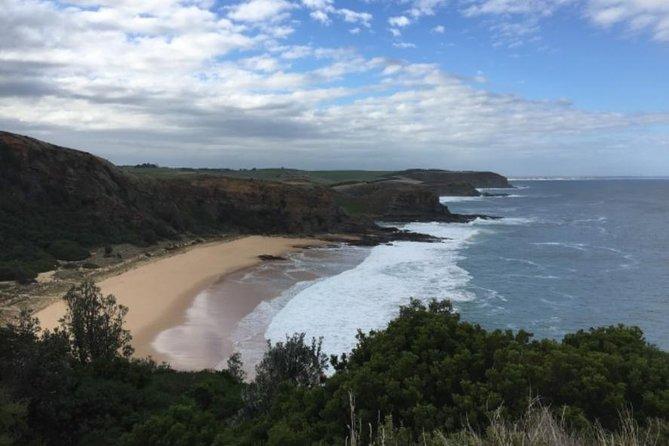 Phillip Island, George Bass Coastal Walk and Penguins Tour