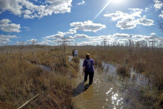 Full Day Everglades: Wet Walk with a Naturalist and Two 1-Hour Boat Trips