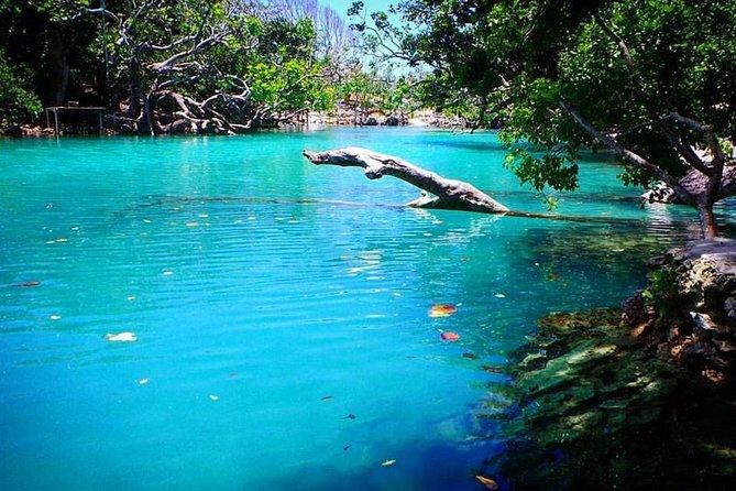 Vanuatu Full Day Cultural Village and Blue Lagoon Tour