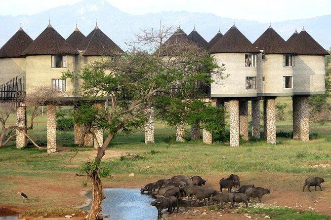 Private 9 Days Kenya Classic Lodge Safari