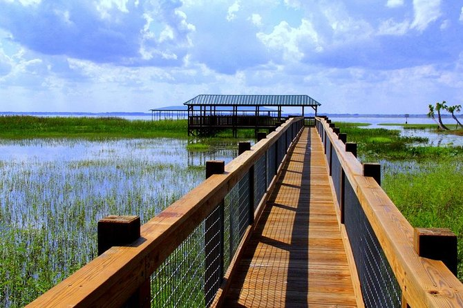 Wild Florida Adventure Package Tour with Transportation