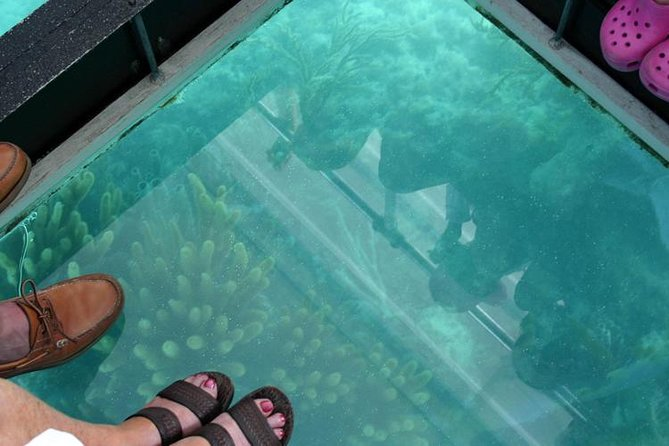 Glass Bottom Boat and Snorkeling Combo in Bermuda