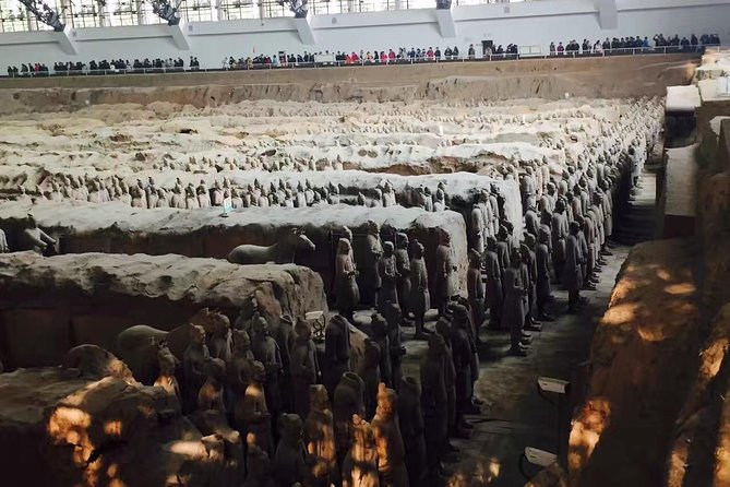 Private Tour-City Wall,Terracotta Warriors museum with 1Night Cave Guesthouse