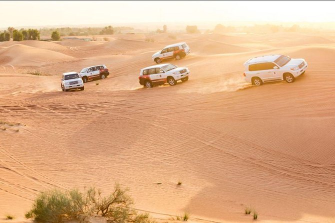 Dubai Desert Safari with Burj Khalifa - Ticket Only with No transfer to Burj Khalifa -