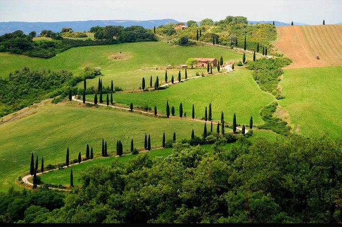 Private Siena and San Gimignano Tour with Wine Tasting From Rome