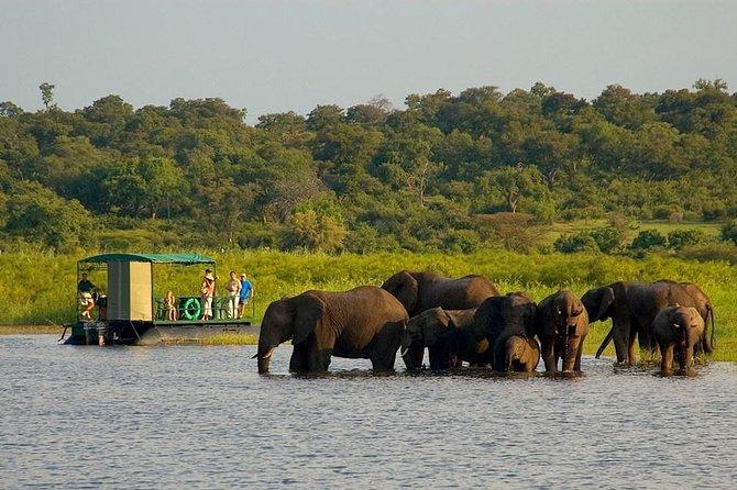 Chobe National Park 4X4 Day Safari and River Cruise