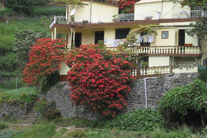 Maroços Mimosa Valley Levada Walk from Funchal