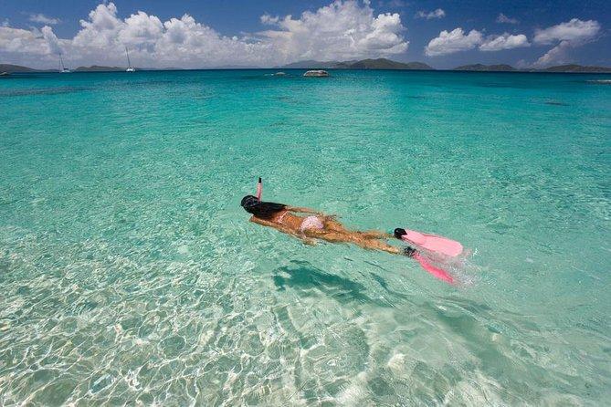 Palm Pleasure Morning Snorkel Adventure