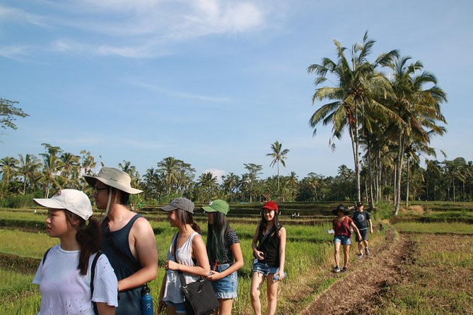 Trekking and Sightseeing tour with lunch