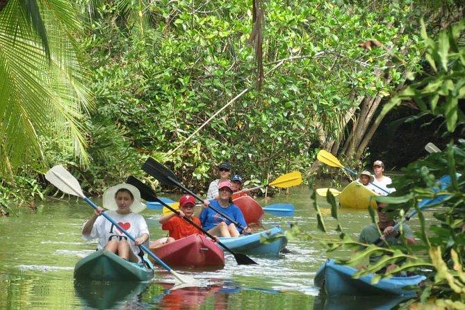 Damas Island Boat Tour From Quepos