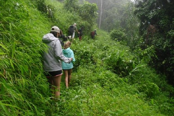 Hiking and Zipline Private Tour from Chiang with Karen Village