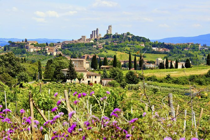 Small Group Tuscany Wine Country Day Trip from Rome with Lunch