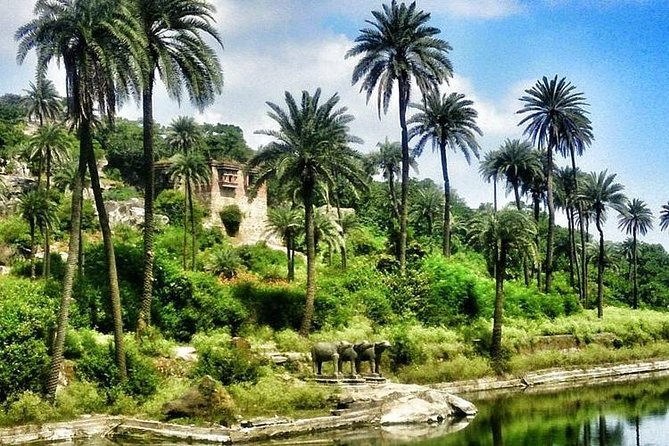 Guided Tour To Mount Abu Sightseeing From Udaipur