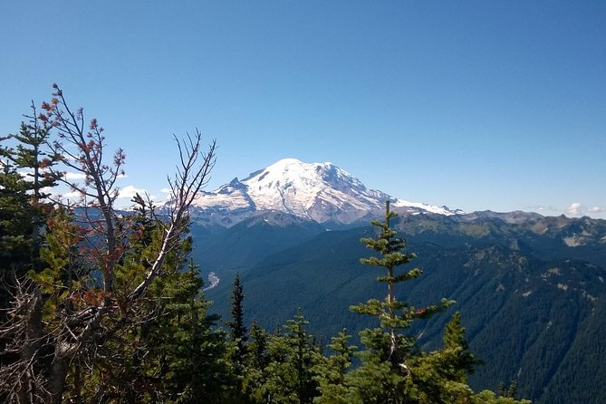 Mt Rainier Seaplane Tour Departing from Lake Washington