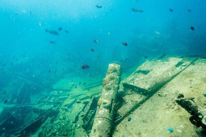 Antilla & Catalina Snorkel Sail