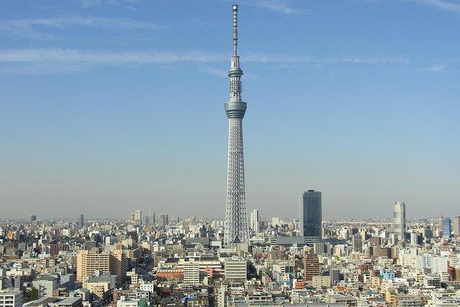 1-Day Tokyo Bus Tour