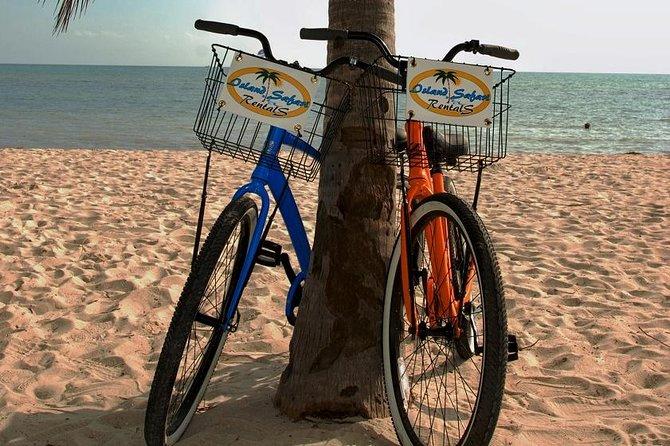 One Day Bike Rental in Key West