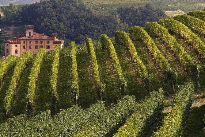 Private Tour: Piedmont Wine Tasting of the Barolo Region