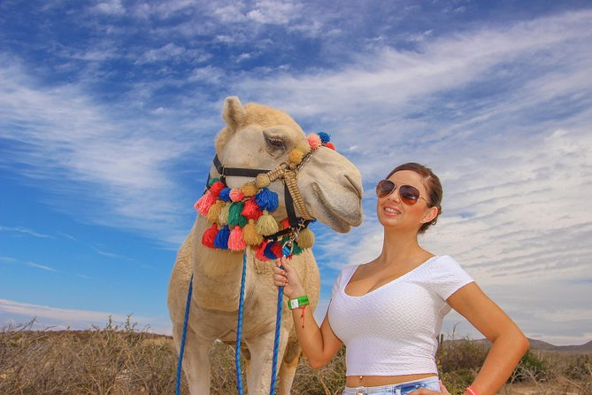 Camel Outback Adventure and Eco Farm from Los Cabos