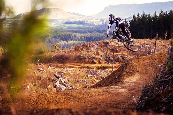 Half-Day Self-Guided Mountain Bike Journey through Whakarewarewa Redwood Forest