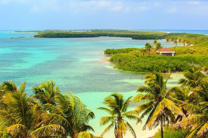 Day Trip to Contoy Island, Snorkeling and Bird Watching Tour