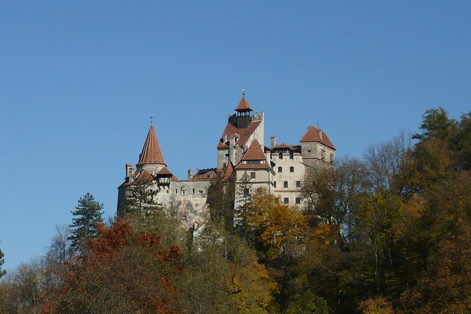 Fortified Churches - Bran Castle - Rasnov Fortress Tour from Brasov