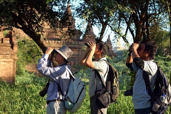 Bagan Temples and Nature Day Trip with Lunch