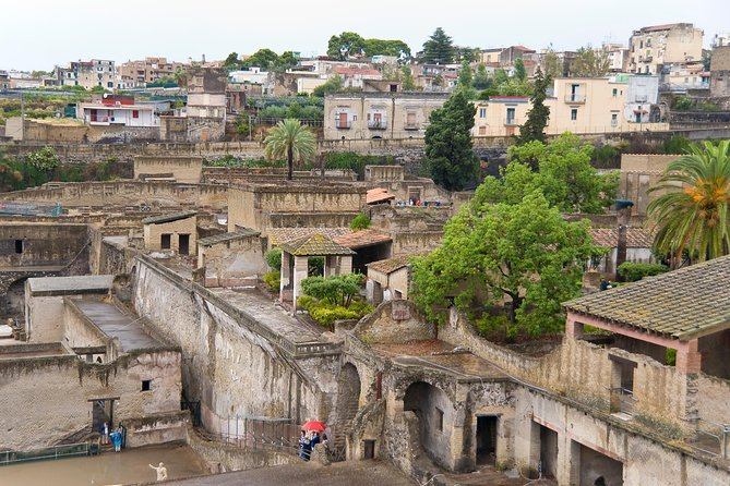 Private tour of Herculaneum archaeological site with local guide