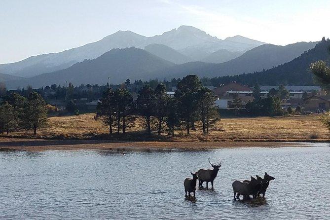 Rocky Mountain National Park and Estes Park Tour from Denver