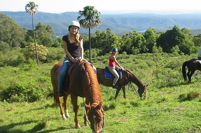 Horse Riding in the Forest from Kusadasi