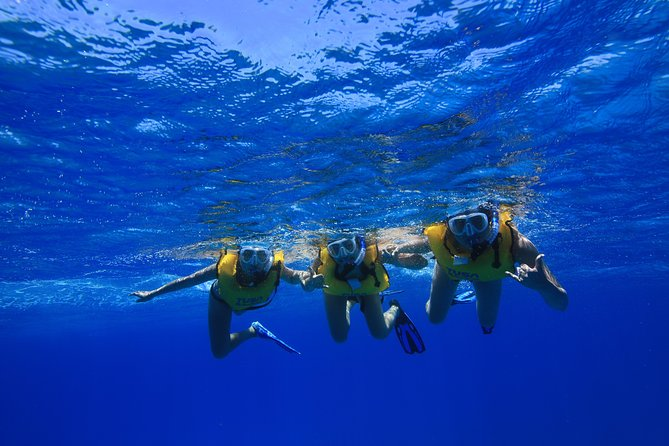 Turtle Canyons Snorkel Excursion