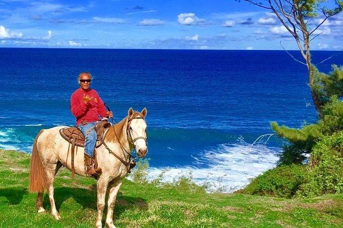 West Maui Mountain Waterfall and Ocean Tour via Horseback